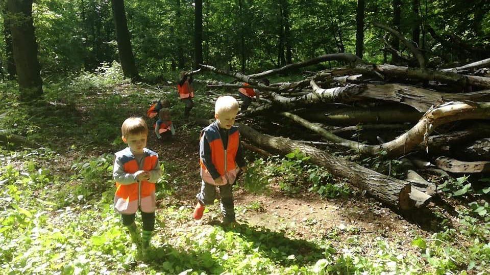La forêt ouvre les portes du langage et des interactions.