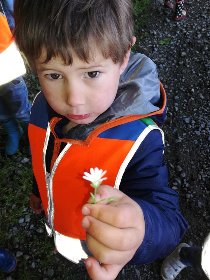 Je découvre de belles fleurs...